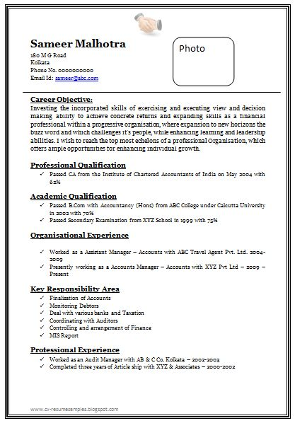 professional chartered accountant resume sample doc 1 job resume formatchartered accountantfree