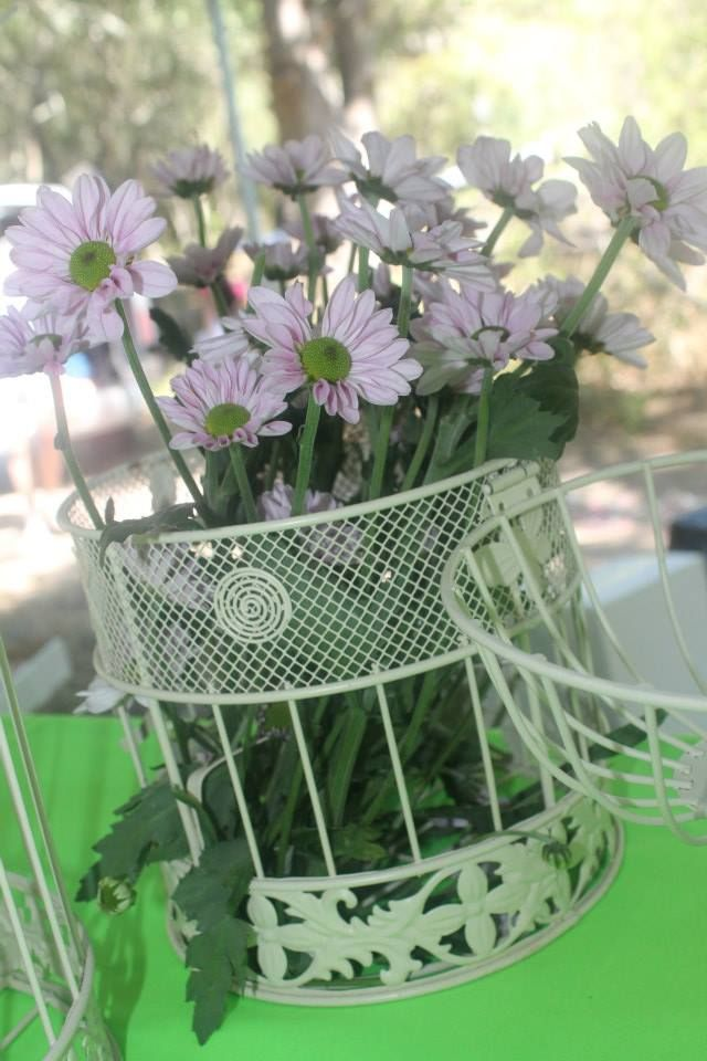 Flowers in birdcage