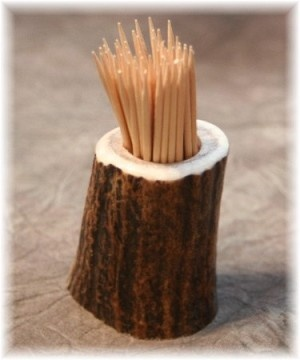elk antler toothpick holder