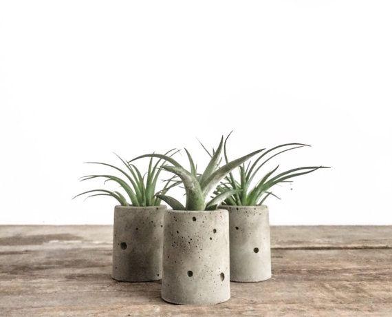 1 Mini Concrete Air Plant Planter-Round, Cement Planter, Wedding Favors, Cylindrical Planter, Modern, Vase, Tillandsia  { details } 1 mini concrete