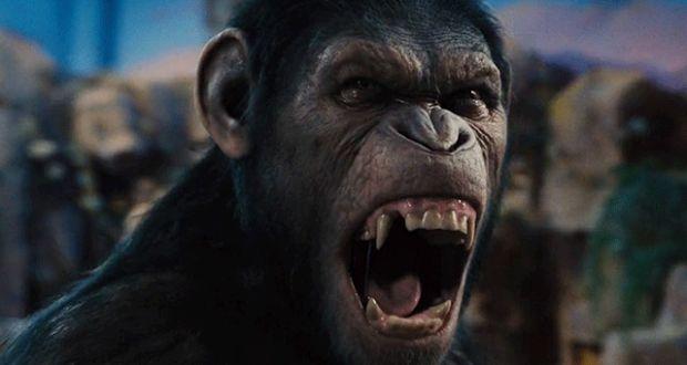 """Τα λάθη της ταινίας """"Planet Of The Apes""""   Verge"""