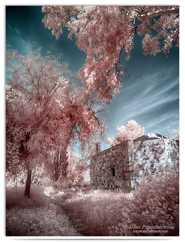 Secret Garden -infrared by LightSculpting.deviantart.com on @DeviantArt