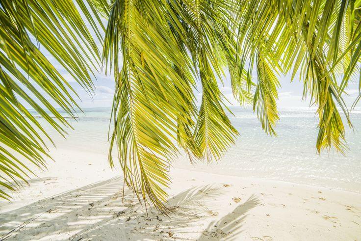 Tahiti - Moorea -