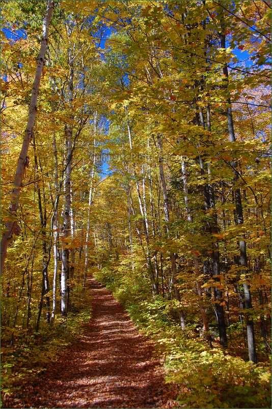 Killarney Provincial Park. Camping in Ontario Parks