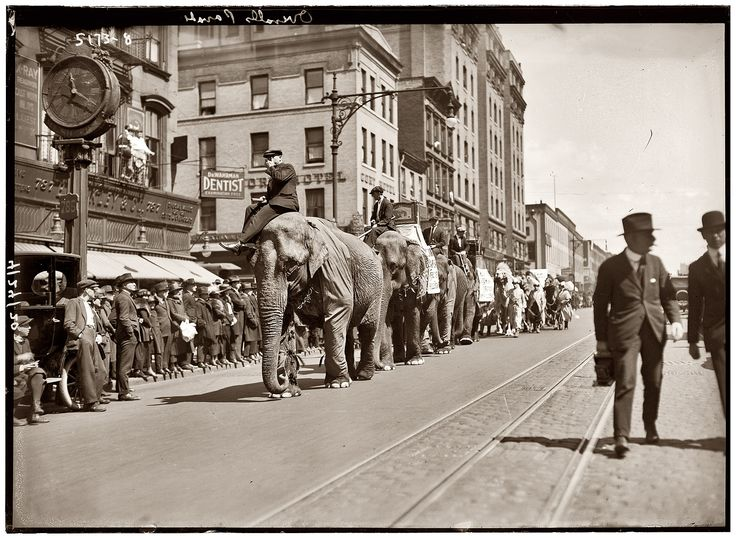 New York City - NY USA - Circa 1920. This photo shows a circus coming to NY. I've been a couple of times to NY, and, for sure, it is a great city. I can't say that it is my favorite city, but for sure, a beautiful one.