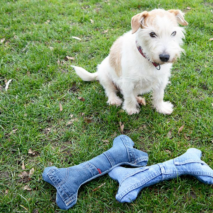 DIY denim dog toy