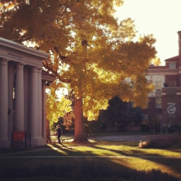 Colorado Mountain College: 8 Best Higher Education For E-Comm Grads Images On