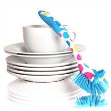 Spotty Dish Brush