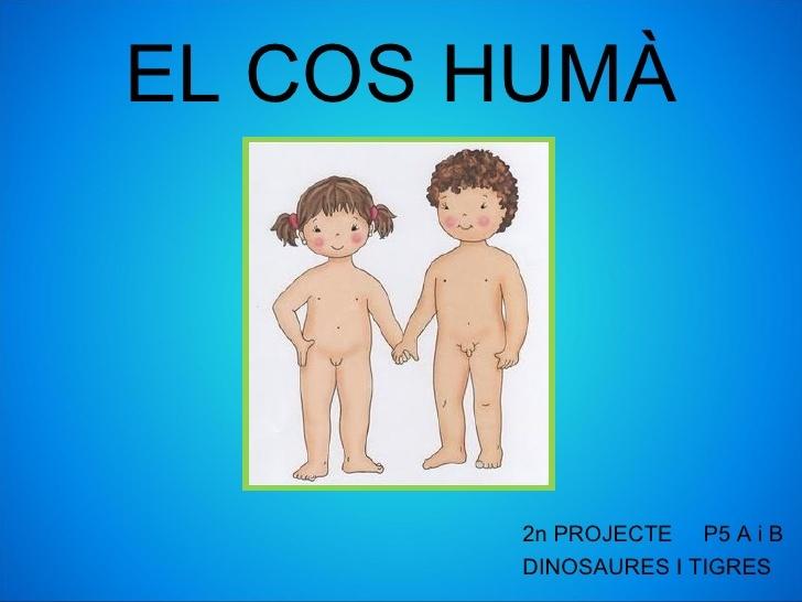 Projecte del cos humà
