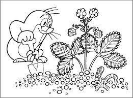 Výsledek obrázku pro krteček omalovánky