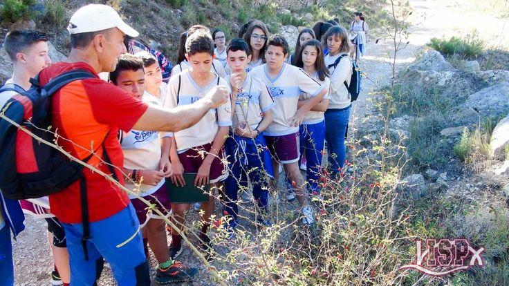 Los alumnos de 2º #SecundariaISP han visitado el Barranc dels Horts en Ares del Maestre, espacio natural de gran valor ecológico y ejemplo de bosque mediterráneo, único por sus características, en el que abundan las carrascas (encinas) y robles centenarios de grandes dimensiones. #InteligenciaNaturalistaISP
