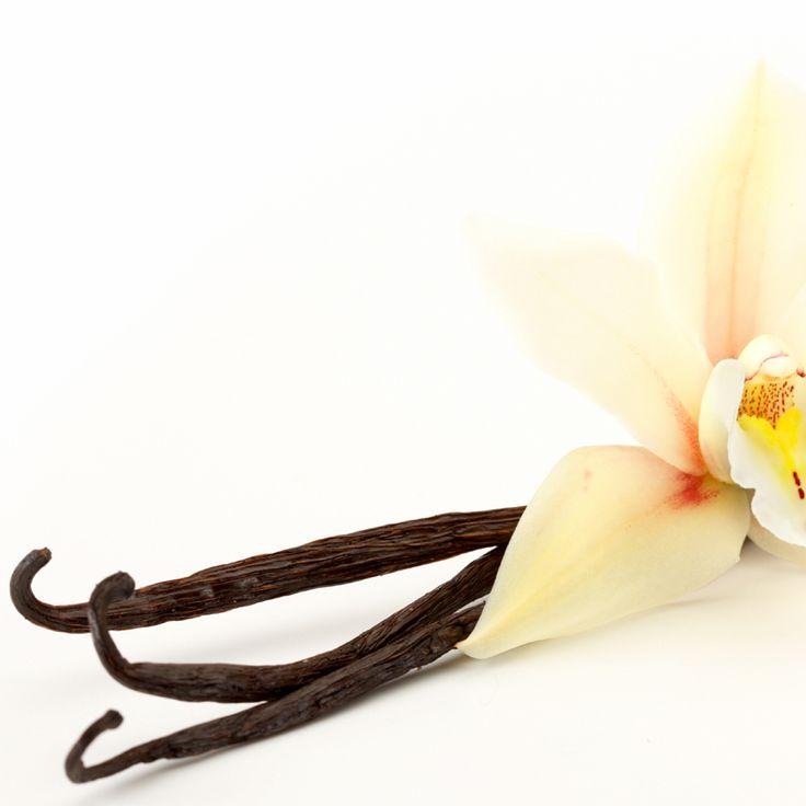 #Vanilla es un farol avalado por Exclusivas Artesanía Redondo.En este caso, te presentamos una pieza colgante que, como los productos avalados por este fabricante, no desentona en aquellas estancias que apuesten por lo rústico. De hecho, su sola presencia crea un halo de nostalgia y encanto propio de espacios con gusto por esta tendencia decorativa.