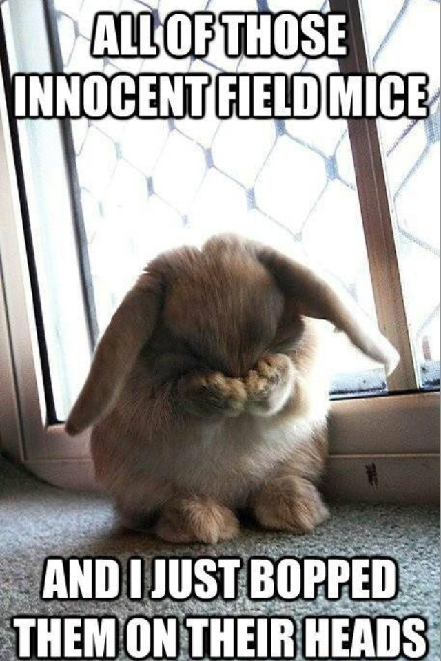 Aww, poor bunny fru fru!! My kids sing this song all the time