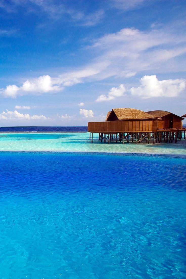 17 Best Images About Maldives Beach On Pinterest