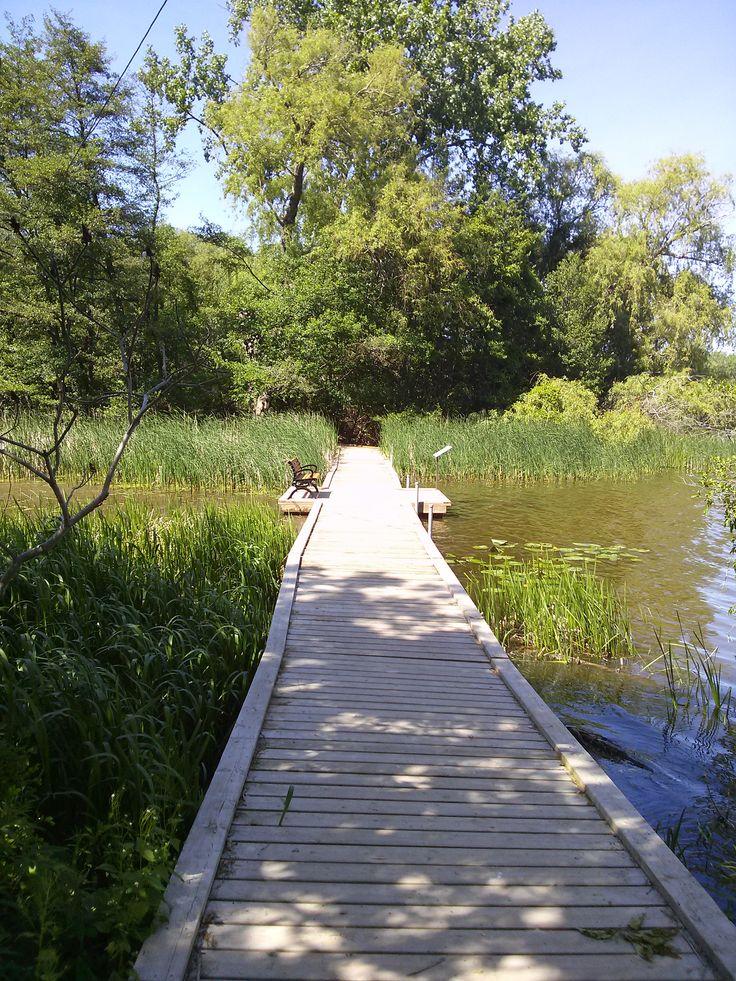 Trails at Royal Botanical Gardens