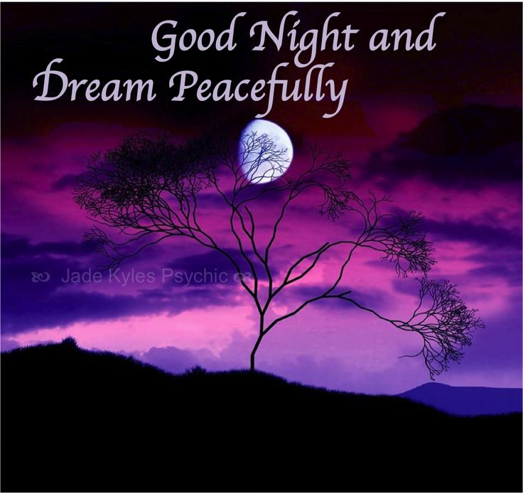 Good night and dream peacefully. ♡ Many blessings Jade Kyles Psychic ♡   Thanks for connecting. I would love you to visit me at www.jadekyles.com or on fb at www.facebook.com/jadekylespsychic . You can also subscribe to my channel at www.youtube.com/jadekylespsychic