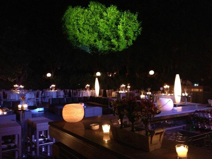 Garden wedding party | Aegli Zappeion  Keyhole View: Retro casual & Clean lines