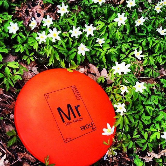 Våra discar syns tydligt under både vår, sommar och höst. Missa inte att skaffa din egen Mr Mid-range. #discgolf #discgolfsweden #midrange #frolfnu #frolf #frisbeegolf #frisbee