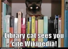 Résultats de recherche d'images pour «Minnesota library with cats»