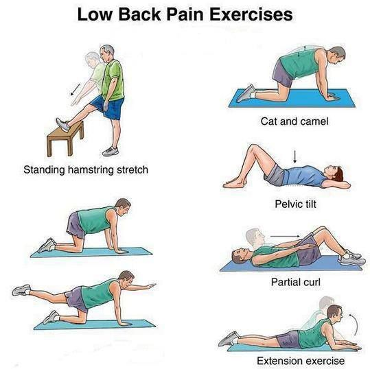 Back Strengthening Exercises: Lower And Mid Back Strengthening ...