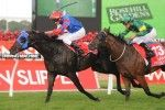 Melbourne Cup news including field, form, barrier draw, odds and tips. Follow our extensive coverage of the Melbourne Cup 2013 live from Flemington.