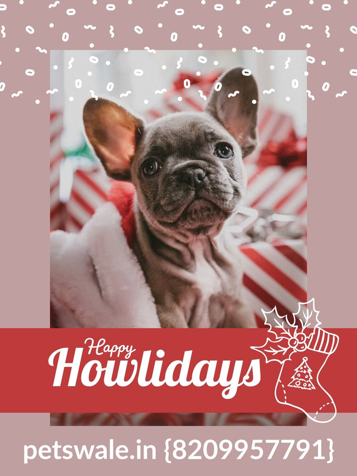 Warmest wishes for a happy Holiday season and a wonderful