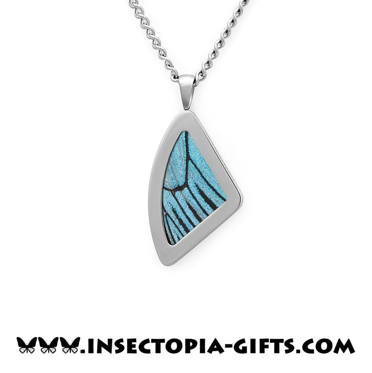 Real butterfly wing jewelry.
