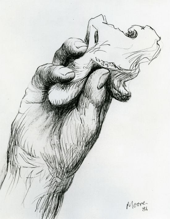 Hand Holding Bone 1981 HMF 81(181) ballpoint pen, conté crayon (rubbed) on Cotman white handmade wove 258 x 199mm photo: The Henry Moore Foundation archive