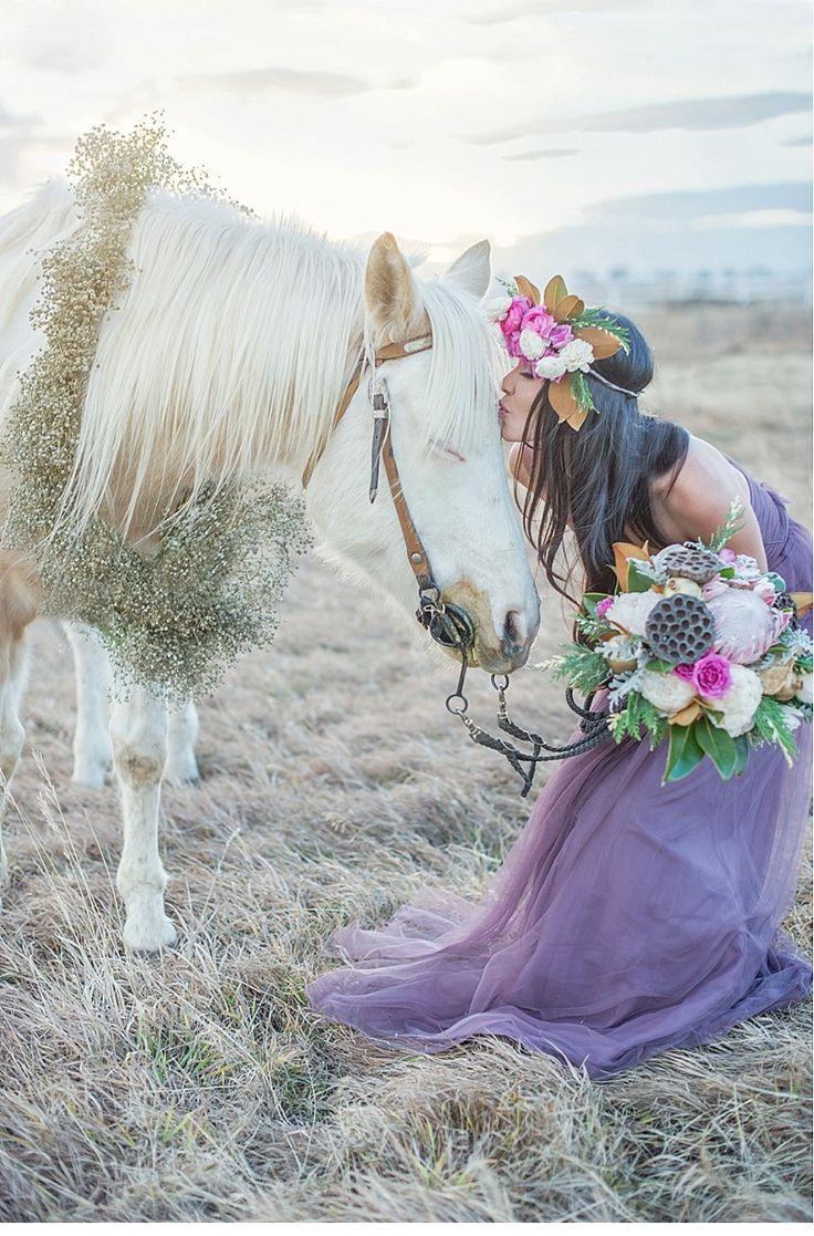 wedding horse                                                                                                                                                                                 Mehr
