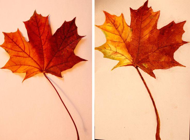 рисуем с детьми осенние листья акварелью. Поэтапный фото мастер класс