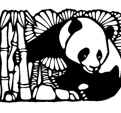 Ms de 25 ideas increbles sobre Silueta de oso en Pinterest