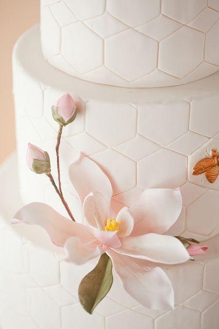 Sugar Magnolia, via Flickr.