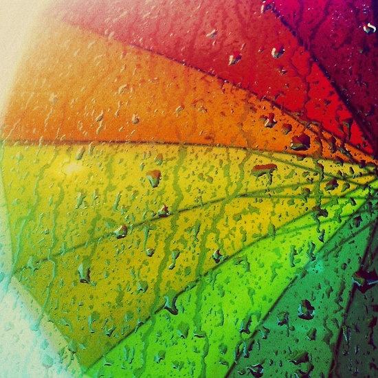 Rainbow Umbrella, by Greg Briggs