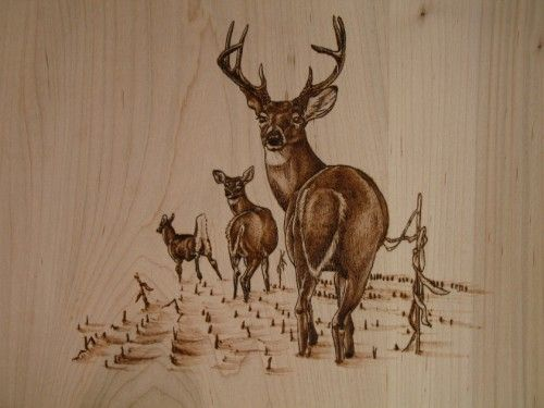 Wood burning patterns wildlife woodworking projects plans for Pyrography templates free