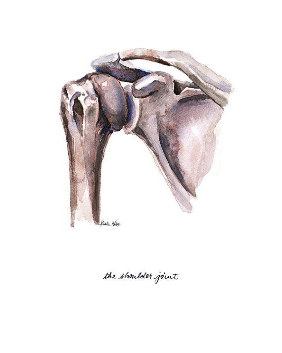 Hombro anatomía común imprimir acuarela anatomía arte por LyonRoad