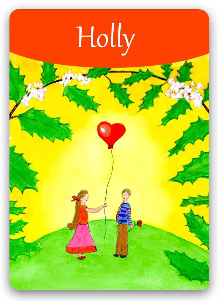 Bach Flower Cards [Holly] - In an extreme negative Holly state, an individual becomes suspicious, feels rage and anger, experiences violent bouts of ill-humor, and, understandably, feels unloved and unworthy of love. In its positive state, individuals are able to live in inner harmony, taking pleasure in the achievements and successes of others, freely accepting and feeling love that flows toward them, and having a sense for the Divine scheme of things.
