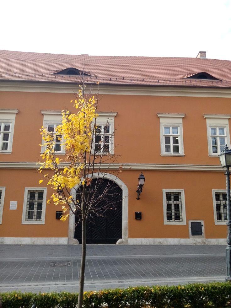 Tárnok utca, Castle district in Budapest.