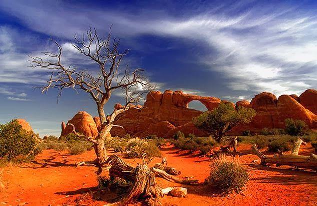 great victoria desert - Google Search