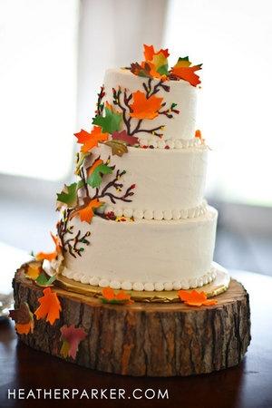 Cake, White, Green, Red, Orange, Brown, Yellow, Gold, Travelers cafe wedding cakes