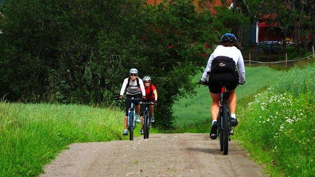 Fem fine sykkelruter i Oslo
