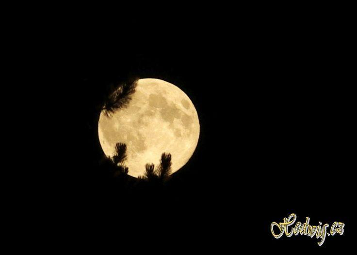 Full Moon Czech Republic 10-8-2014