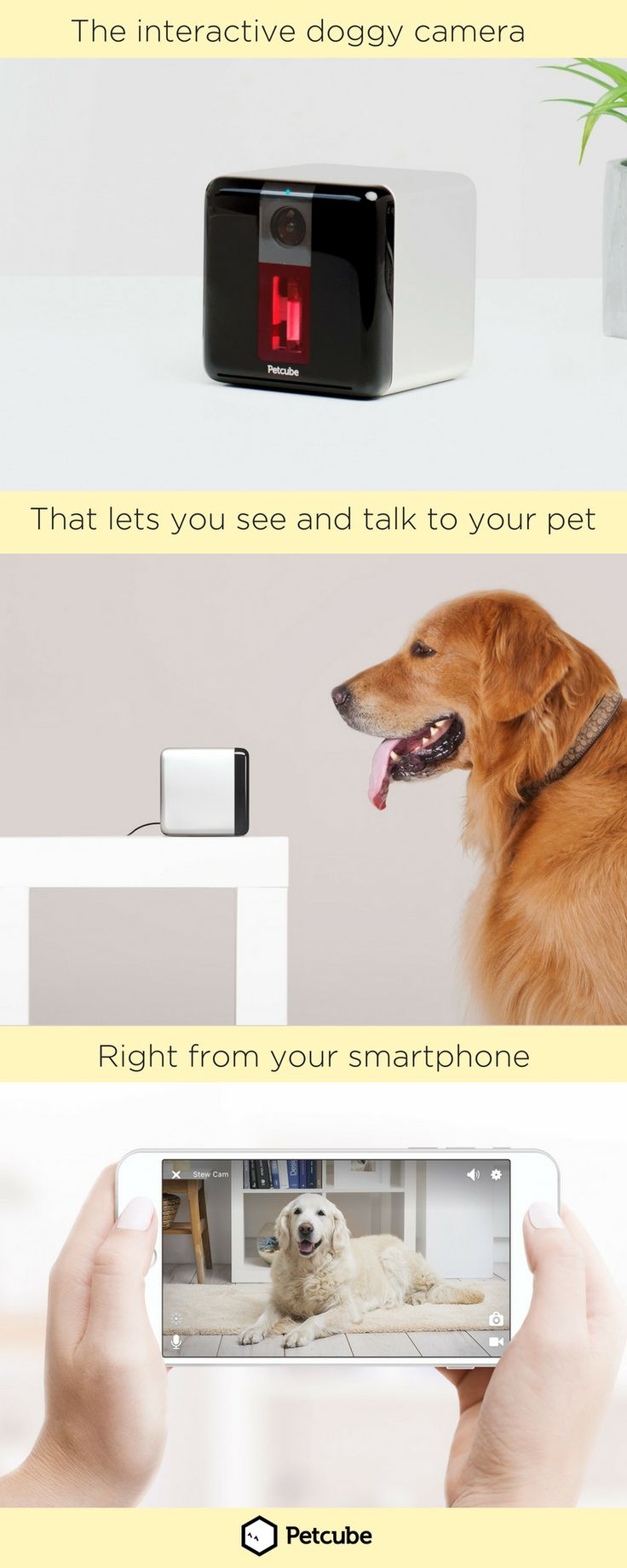 Your dog misses you when you leave. Stop separation anxiety and destructive puppy behavior and stay more connected with your pet with the Petcube Play doggy camera. Find out how this pet cam lets you watch, talk to, and even play with your pet all from your smartphone.