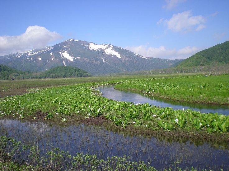 福島県 尾瀬国立公園 Oze National Park