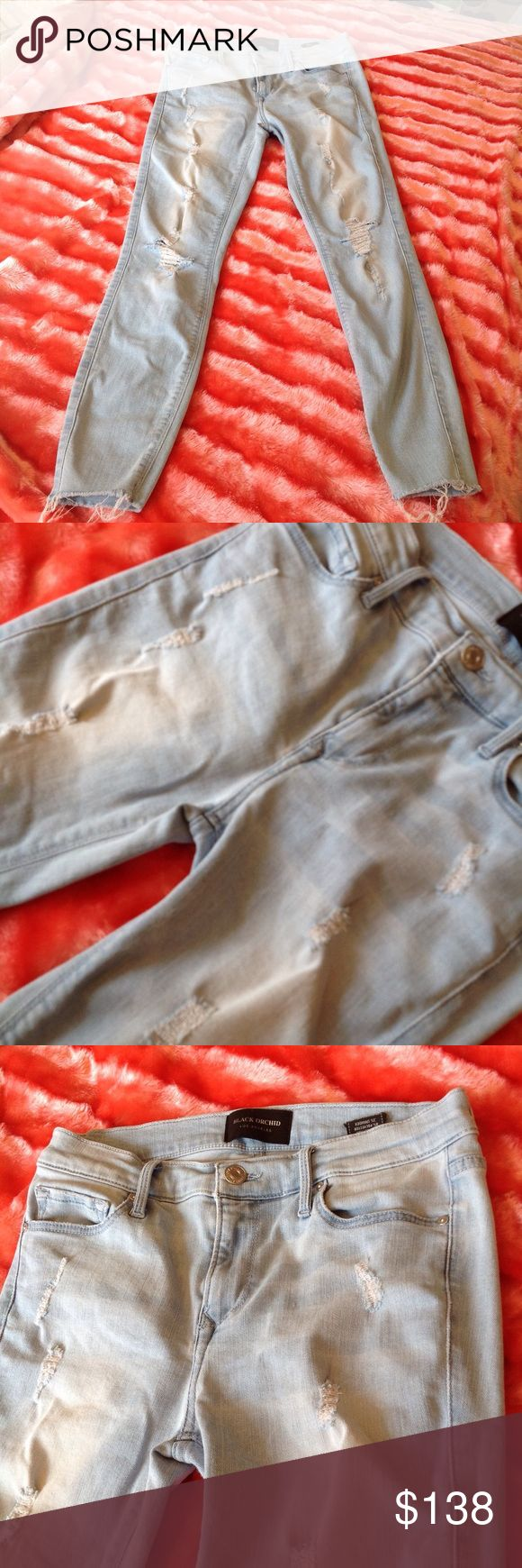 Black Orchid women's distressed jeans. Size 2. Black Orchid women's distressed jeans . Frayed hem and throughout. Size 2. Black Orchid Jeans
