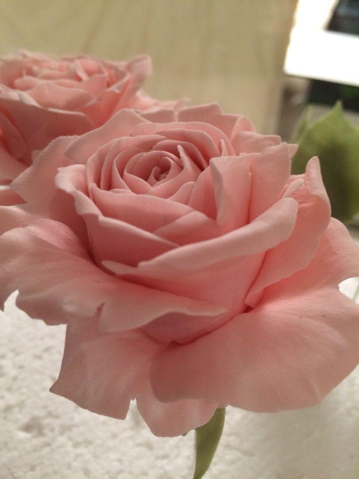 Rose in zucchero