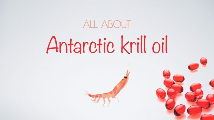 ALL ABOUT ANTARCTIC KRILL OIL: Why is krill oil superior to other fish oils? Find out in our short video...