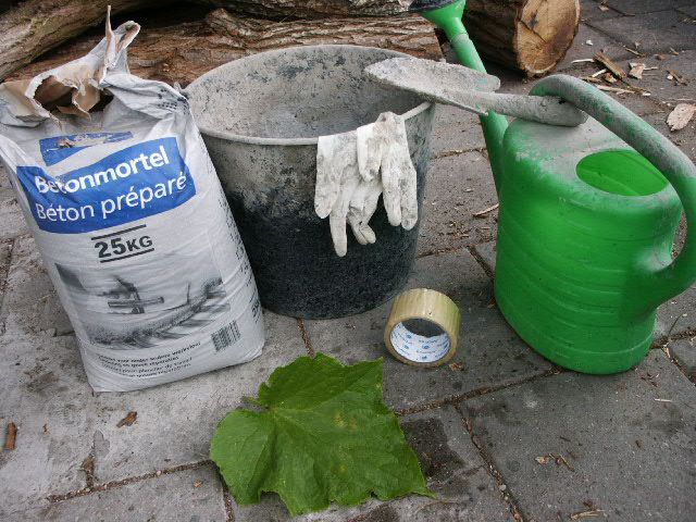Tutorial - how to make concrete leaves, you won't believe the finished product!