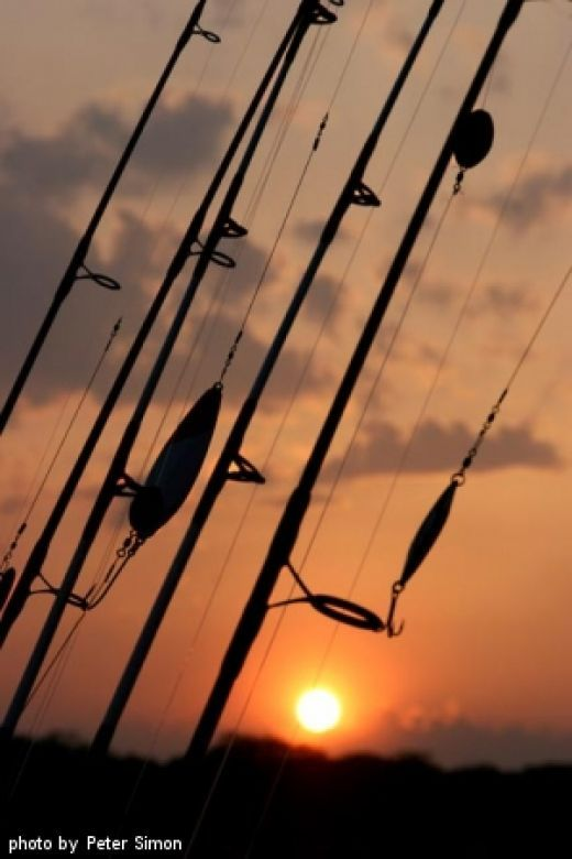 17 best ideas about fishing rod online on pinterest | camping tips, Fishing Rod