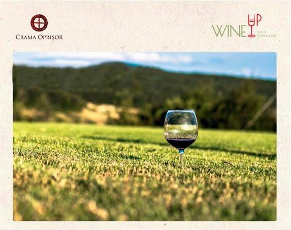 Crama Oprisor WineUp