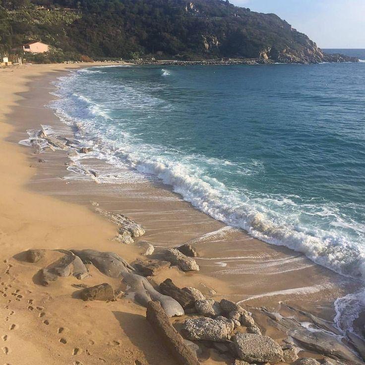 http://ift.tt/1NHxzN3  Buongiorno dalla spiaggia di #cavoli a #marinadicampo #camponellelba nello scatto di @living.elba. Continuate a taggare le vostre foto con #isoladelbaapp il tag delle vostre vacanze all'#isoladelba.
